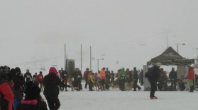 Trofeo de Mushing Valgrande-Pajares