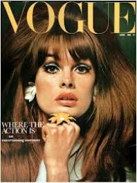 Jean Shrimpton was my idea of perfection. She modelled for only a few years and retired to obscurity in the early 70's.