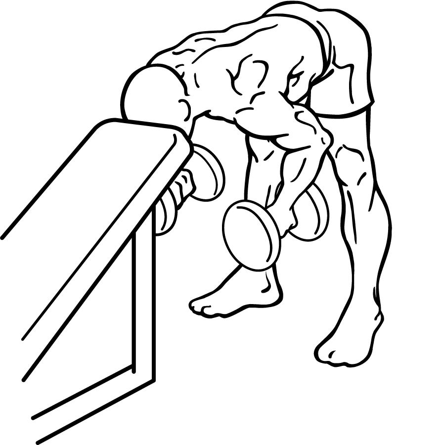 everkinetic dumbbell reverse flyes