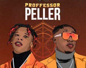 Mp3: Seyi Vibez Ft. Zlatan – Professor Peller