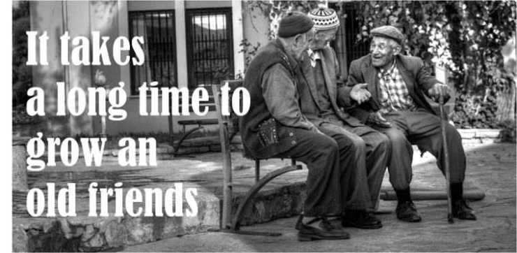 It takes a long time to grow an old friends quotes