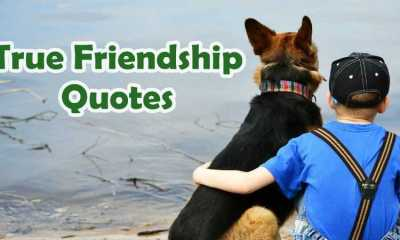 Top 5 True Friendship Quotes
