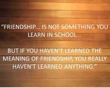 FRIENDSHIP IS NOT SOMETHING YOU LEARN IN SCHOOL