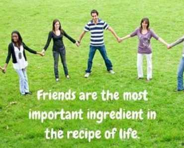 The recipe of life
