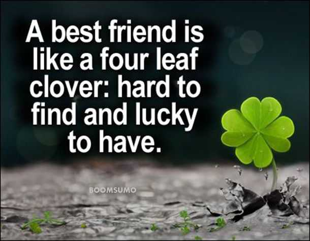 Best Friends Forever Quotes About Four Leaf Cute Friend Captions Delectable Friends Forever Quotes