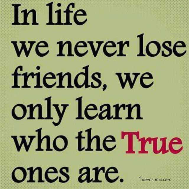 Quotes About Real Friendship Amazing True Friends Quotes Never Lose Friends Learn It Best Friendship