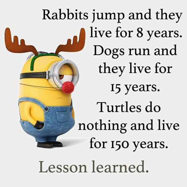 Cool Funny Quotes Do Nothing Live 150 Years Funny Phrases