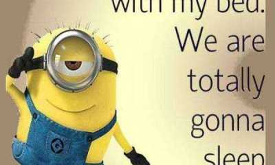 Funny Minion Quotes Of The Week funny quotes