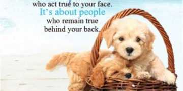 best friends quotes life Sayings people who act true to your face true friends quotes
