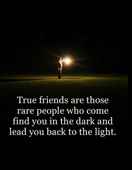 Best Quotes About Friendship: True Friends Rare People Who ...