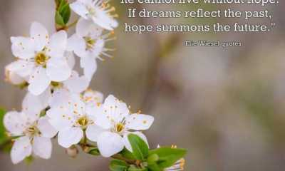 Best Hope Quotes about life Just as man cannot live without dreams