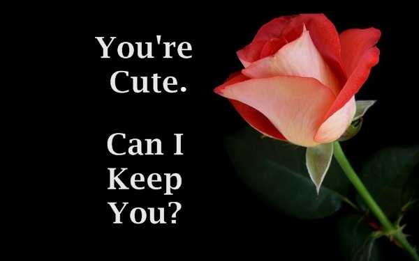 Lovely Can I Keep You Quotes