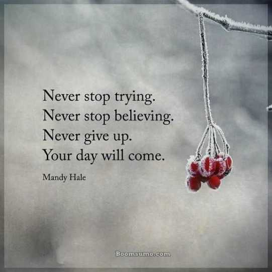 Trying Quotes Delectable Encourage Quotes Of Encouragement Never Stop Trying Your Day Will