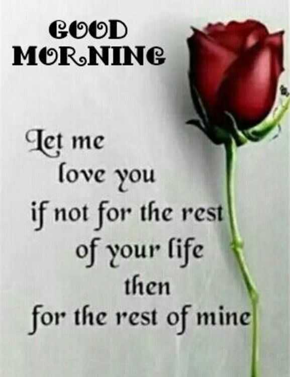 Image of: Her Good Morning Quotes Love Sayings Good Morning Let Me Love You Love It Boomsumo Quotes Good Morning Quotes Love Sayings Good Morning Let Me Love You Love