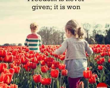 Inspirational Quotes about Life Freedom is Never Given, earn to