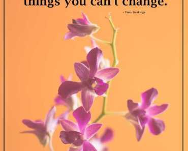 Inspirational Life Quotes If You Can't Change, Let It Go