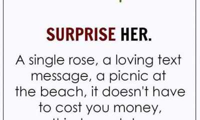 Love Quotes of the Day Love Sayings 'Surprise her Single Rose
