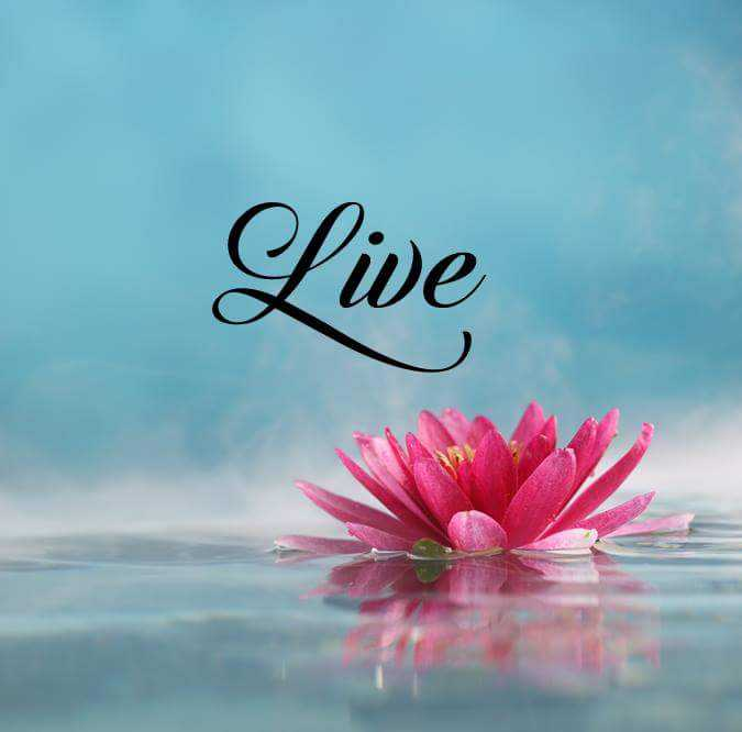 Short Inspirational Quotes About life Sayings Live One ...