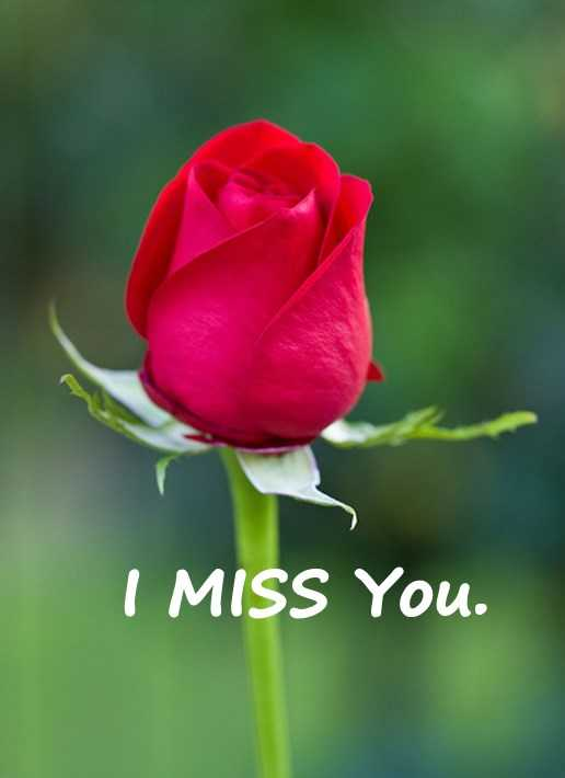 Best Love Quotes Love Sayings I Miss You Remember Me My Love