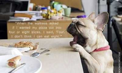 Funny Food Quotes funny Sayings When the Waitress asked to Cut What I Did