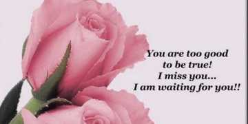 Good Morning Quotes Good Morning My Love, I Miss You