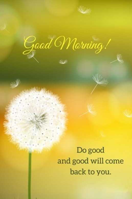Good Morning Quotes Life Sayings Good Morning Do Good And Good Will