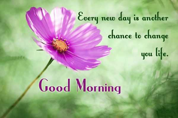 Good Morning Quotes Life Sayings Good Morning Every New Day Change