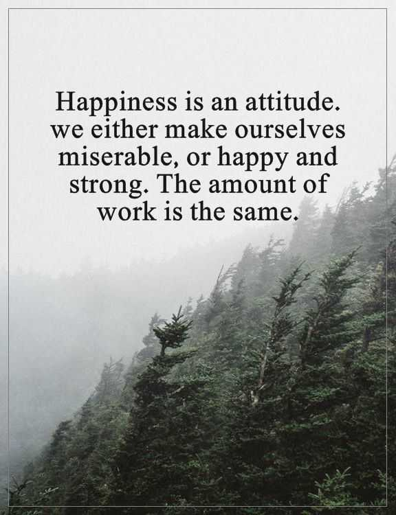 Happiness Quotes About Attitude Happy And Strong, The same Amount Of Work Why