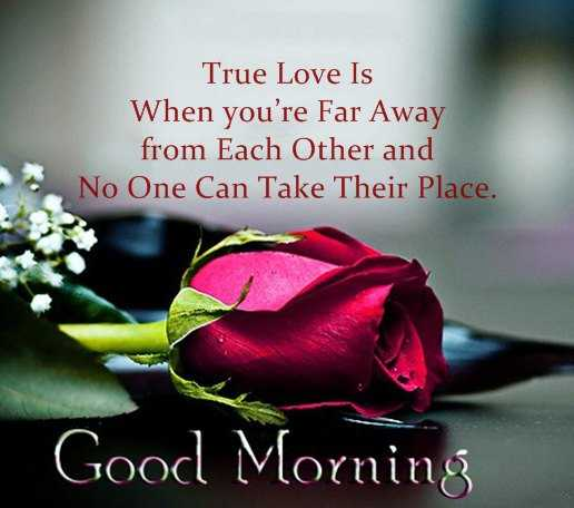 Inspirational Love Quotes Good Morning True Love Is When Youu0027re Far Away