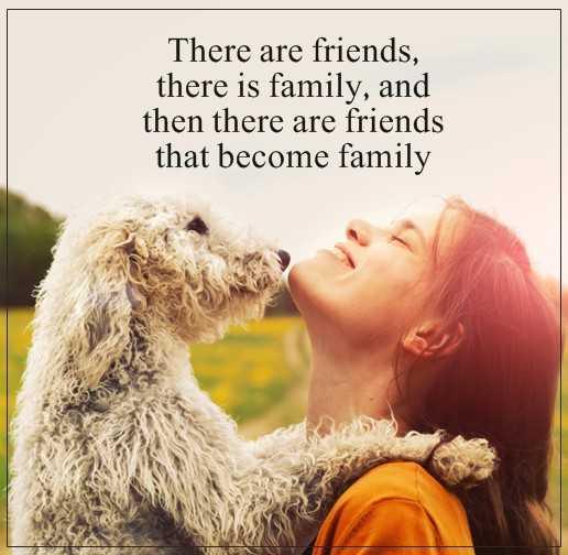 Short Friends Quotes Friends That Become Family When They Are Magnificent Friends Love Quotes
