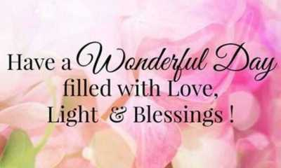 Best Love Quotes That Will Make Wonderful Day Filled With Love