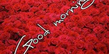 Cute Good morning quotes for her
