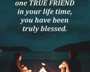 Friendship Quotes The Reason Why Everyone Love One True Friends