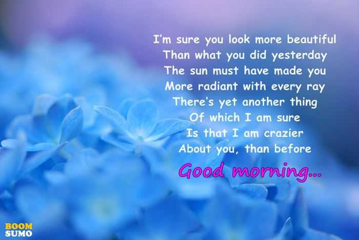 Good Morning Quotes Which I Am Sure Ive Ever Seen In The World