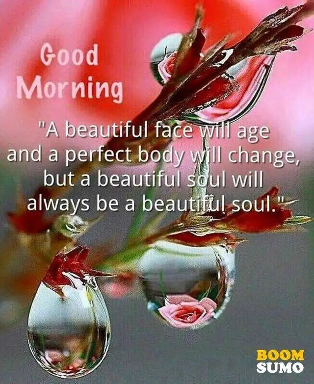 Good Morning Quotes Beauty Perfect Body Changed But Beautiful Soul Amazing Beautiful Soul Quotes