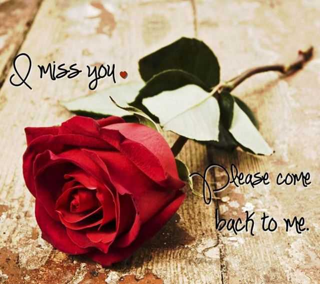 Sad Love Quotes I Miss You Please Come Back To Me