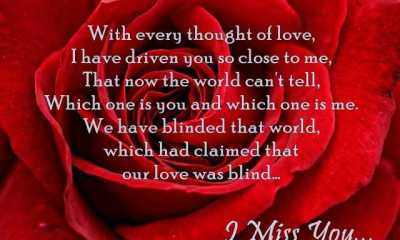 True Love Quotes Which One Is You And Which One Is Me
