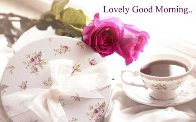 Good Morning Quotes About Lovely Good Morning
