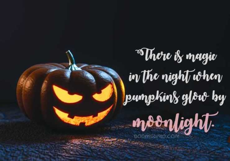 Number 13 Super Spooky Halloween Quotes That Will Scare You 1