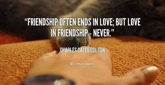 105 Best Friends Quotes About Life Love Happiness And Inspirational Motivation 5