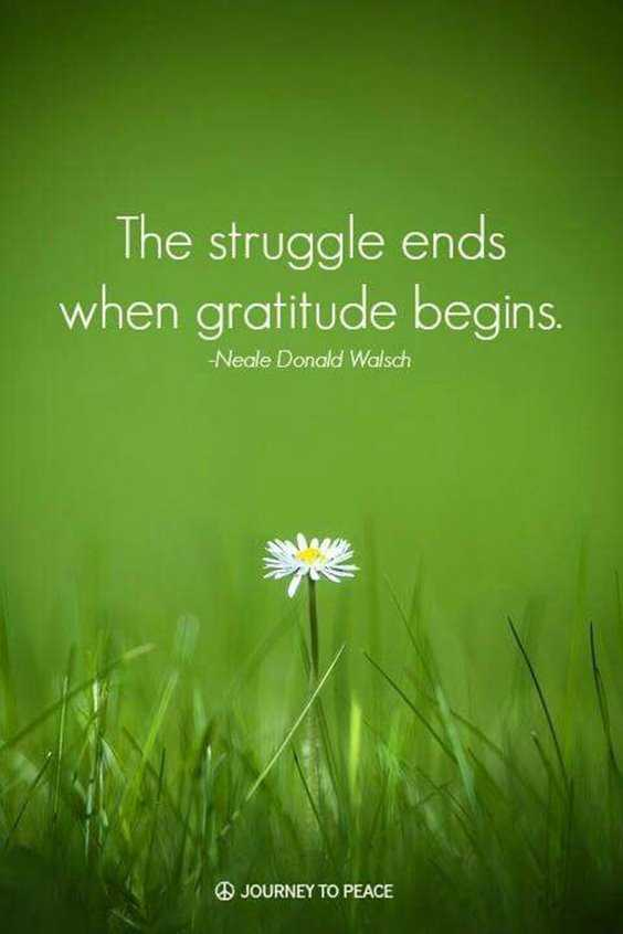 56 Inspiring Motivational Quotes About Gratitude to Be Double Your Happiness 12