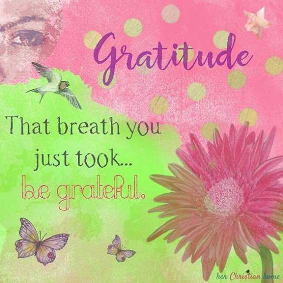 56 Inspiring Motivational Quotes About Gratitude to Be Double Your Happiness 13