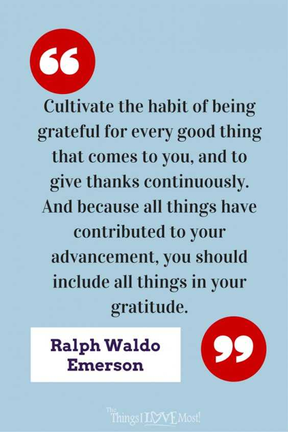 56 Inspiring Motivational Quotes About Gratitude to Be Double Your Happiness 16