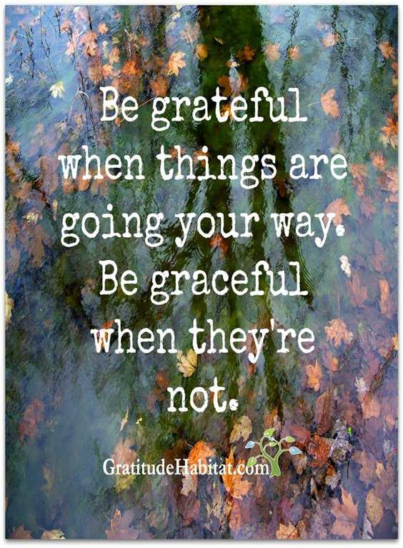 56 Inspiring Motivational Quotes About Gratitude to Be Double Your Happiness 18