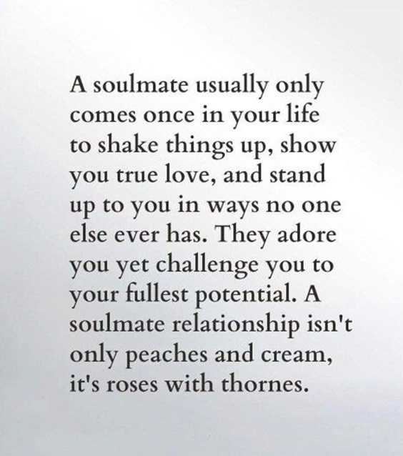 85 Best Quotes About Love True And Real Relationships Advice ...