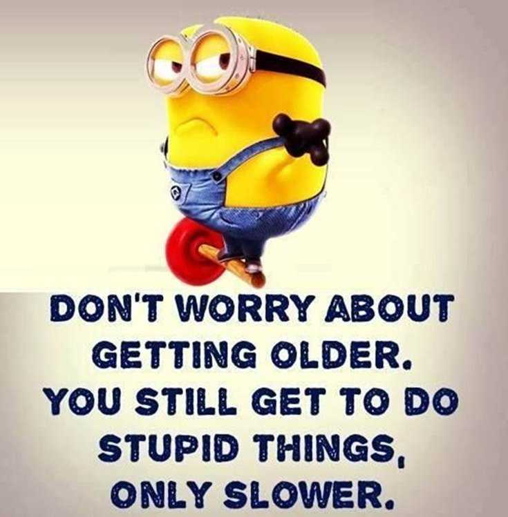 50 Best Funny Minion Quotes Funny Quotes Life 1