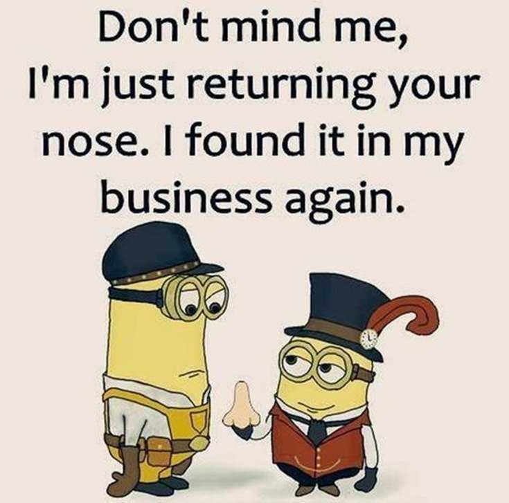 50 Best Funny Minion Quotes Funny Quotes Life 29