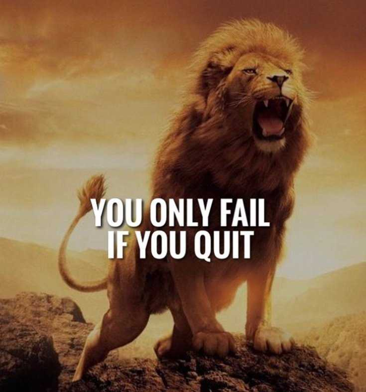 67 Top Quotes Inspirational for Success That will Inspire You Extremely 7