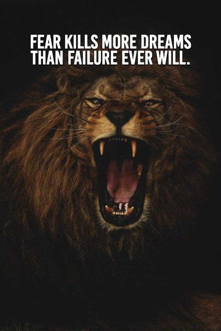 58 Motivational Quotes Quotes About Success 15