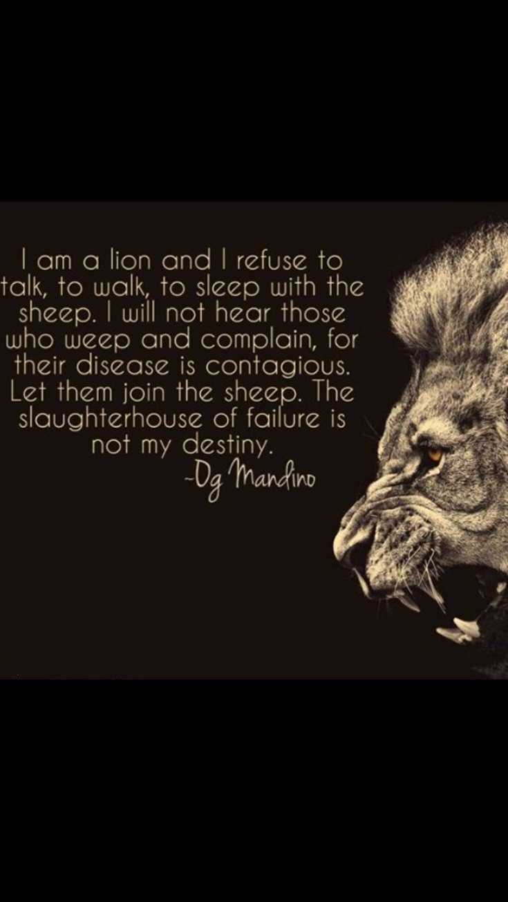 58 Motivational Quotes Quotes About Success 16